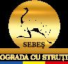 Ograda cu Struți – Sebeș